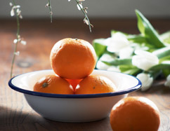 Emaille Schüssel Obst